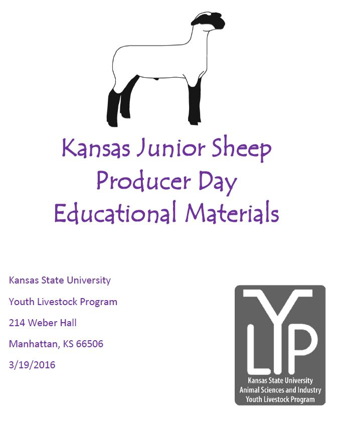 Jr. Sheep Day Educational Resource Cover