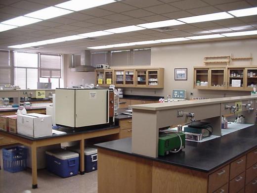 Swine Lab | Facilities | Animal Sciences and Industry ...
