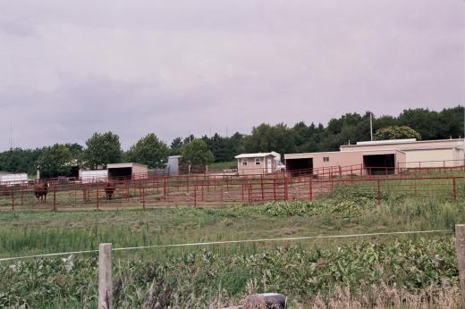 Horse Unit Facilities Animal Sciences And Industry
