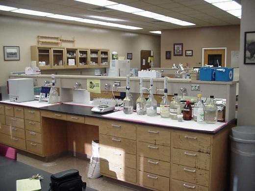Swine Lab Facilities Animal Sciences And Industry